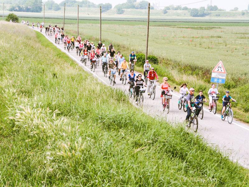 pedalata-per-la-vita-strada-campagna